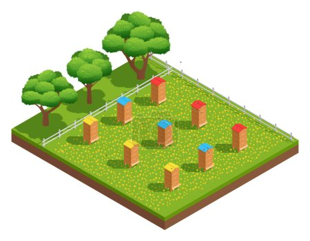Isometric Composition Of Beekeeping Apiary