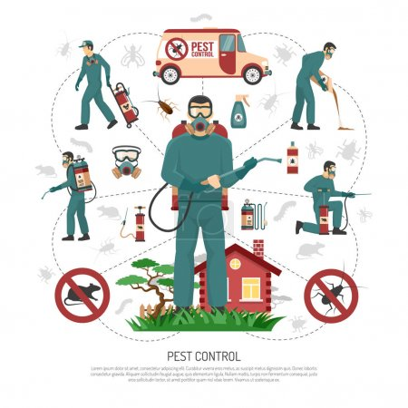 Pest Control Services Flat Infographic Poster