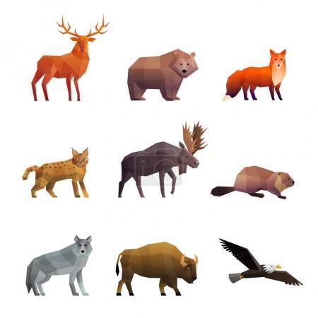Illustration pour Animaux nordiques sauvages 3d icônes polygonales colorées serties d'ours loup renard et illustration vectorielle isolée aigle - image libre de droit