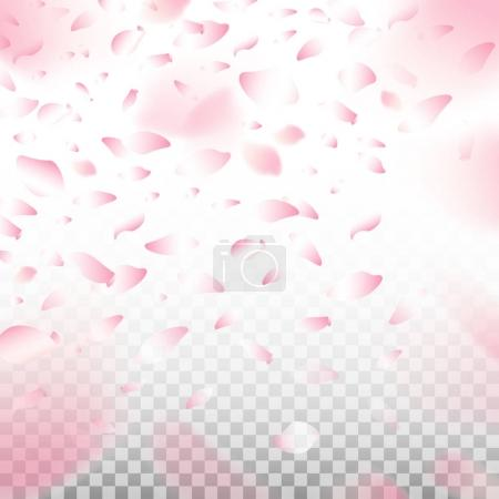 Flowers petals blossom falling