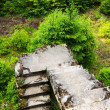 Concrete stairs at abandoned Tin mine Rolava and P...