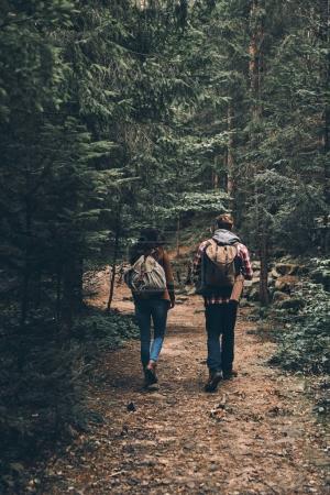 Vue arrière du couple avec des sacs à dos, marche en forêt et Voyage destinations