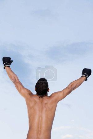 Photo pour Vue arrière d'un jeune homme debout les bras levés - image libre de droit