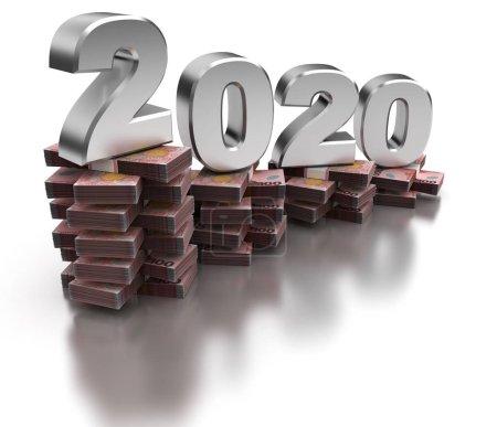 Foto de Mala economía neozelandesa 2020 (aislada sobre fondo blanco) - Imagen libre de derechos