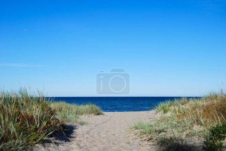 Photo pour Chemin vers la plage de sable dans la baie de la mer Baltique à la Suède de l'île Oland - image libre de droit