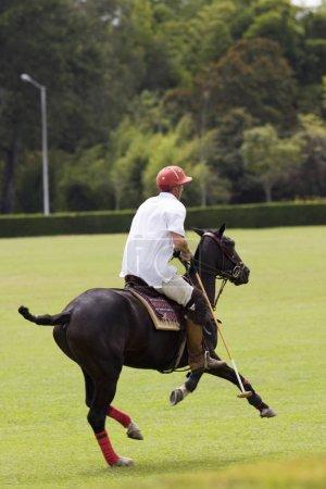 Photo pour Vue arrière d'un homme jouant au polo - image libre de droit