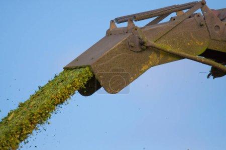 Photo pour Éjection dans une déchiqueteuse de maïs avec éjection - image libre de droit