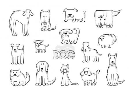 Vector set of different dog breeds. Funny caricature animals characters. Contour isolated black and white sketch illustration. The inscription and heart.