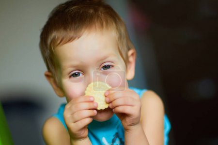 Boy eating cookies