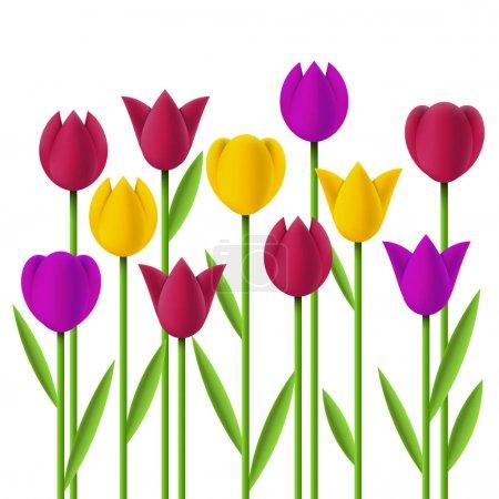 Simple design tulips set