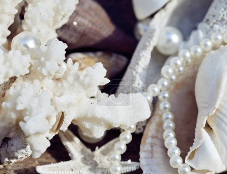 a lot of sea shells and perls in art mess