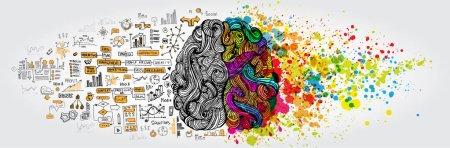 Illustration pour Concept gauche-droite du cerveau humain. Partie créative et partie logique avec gribouillage social et commercial isolé sur fond blanc - image libre de droit