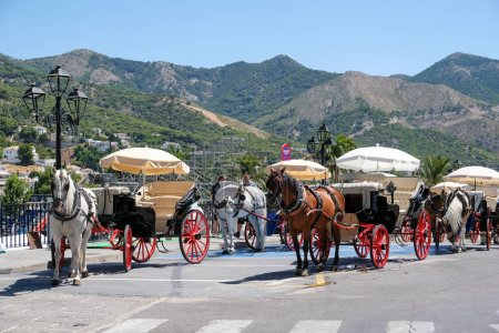 MIJAS, ANDALUCIA/SPAIN - JULY 3 : Horse and Carriage in Mijas An