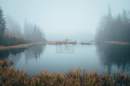 Photo pour Misty morning by autumn lake, peaceful scenery, white edit space - image libre de droit