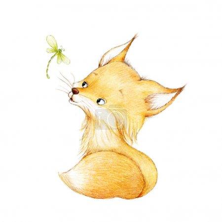 Photo pour Libellule et fox lumineux dessinés à la main - image libre de droit
