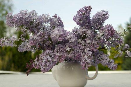 Photo pour Fleurs lilas dans un vase sur une table en bois - image libre de droit