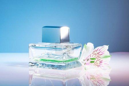Photo pour Bouteille de parfum avec fleurs sur fond bleu vif - image libre de droit