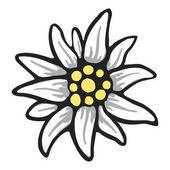 edelweiss flower symbol alpinism alps germany logo