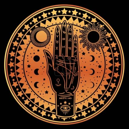 Illustration for Vector illustration design of Vintage Fortune Teller Hand with Palmistry diagram, mystic and occult symbols. - Royalty Free Image