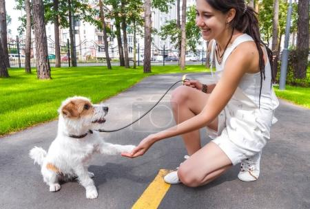 Happy young smiling woman shaking paw to her dog. Human and pet friendship or agreement