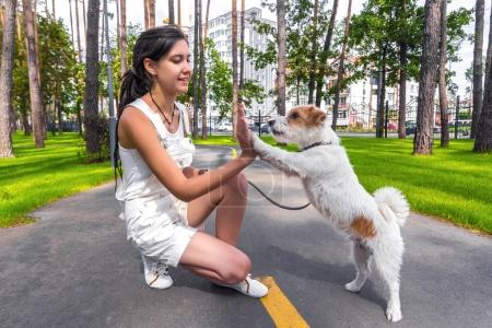 Happy young woman do trainnig with dog outdoors in a summer park. Dog give a high five to owner