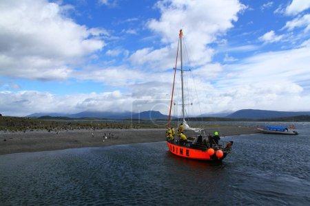 Photo pour Ushuaia, Argentine, vue de l'île de Hammer, les gens sur le yacht observent des pingouins de Magellan - image libre de droit