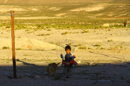 Photo for A boy  playing with toy car on field where alpacas and llamas grazing  in Patagonia, Chile - Royalty Free Image