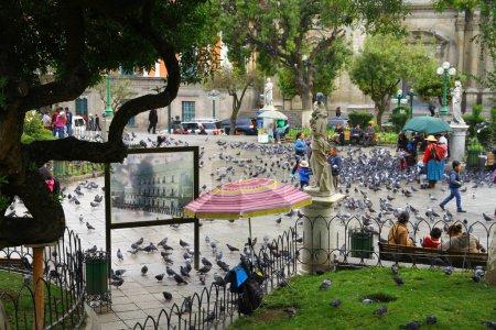 Photo pour Une vue de la Plaza Murillo qui est la place centrale de la ville et il est toujours plein d'oiseaux et de vendeurs de rue - image libre de droit