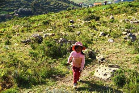 Photo pour Une petite bolivienne ramasse des herbes naturelles dans les montagnes, Bolivie - image libre de droit