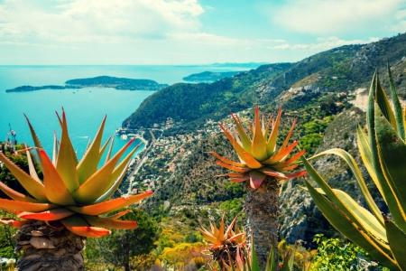 Panoramic aerial view of Nice from the mountain, Cote d'Azur, France, Europe.