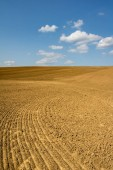 Spring countryside with plowed field and blue sky