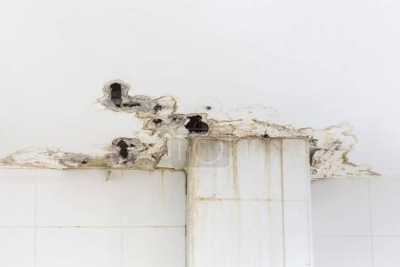 Photo pour Plafond blanc à l'intérieur de l'immeuble endommagé montrant l'humidité et la moisissure sale par l'eau qui fuit et - image libre de droit