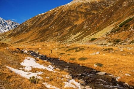 Photo pour Landscape of the Swiss Alps and forest of national parc in Switzerland. Alps of Switzerland on autumn. Fluela pass road. Swiss canton of Graubunden. - image libre de droit