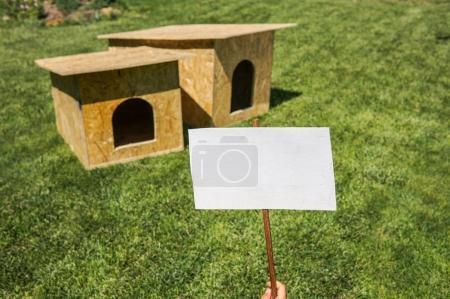 Boy hold empty cardboard over dog house background