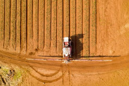 Photo for Aerial view of Pesticide Sprayer Tractor working on a large field - Royalty Free Image