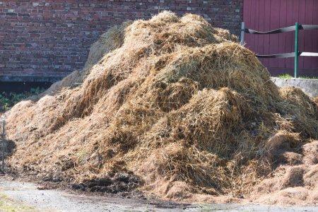 Photo pour Une pile de fumier sur une ferme en arrière-plan un mur de briques . - image libre de droit