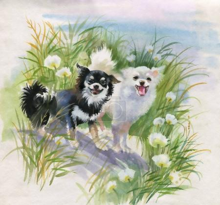 hand drawn dogs on the nature