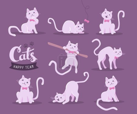 Vector collection of illustration of cute cat in different poses