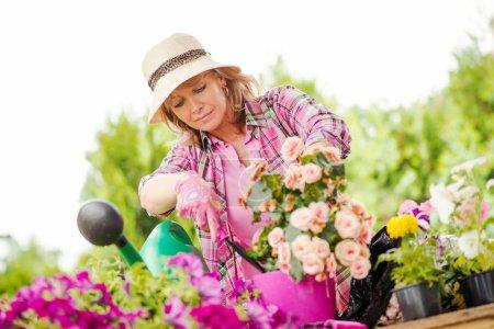 Gardener taking care of her plants in a garden