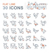 Set Vector Line Icons of Meat and Poultry