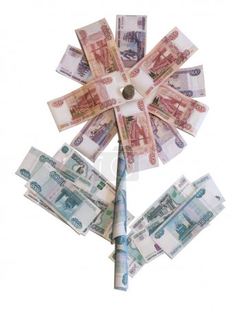 Flower of the Russian banknotes