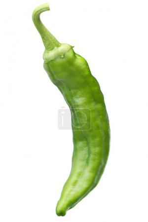 Numex Big Jim green chile, path