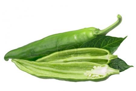 Hatch green chile C. annuum, paths