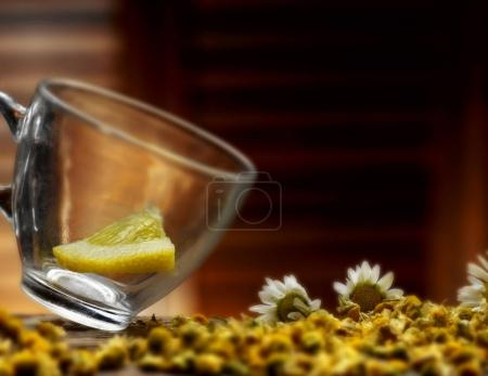 Photo pour Infusion chaude de camomille - image libre de droit