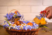 Exposition hands make Eastern celebration, basket with violet and white snowdrops, Eastern cake, and cup of tea on background on wooden table and white brich background, Happy eastern.