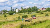 Man farmer turns the hay in the trailer with a hay fork. Lithuania Vilnius
