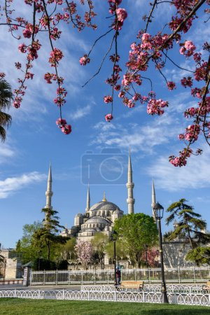 Fatih Mosque, Conquerors Mosque, in spring time, Istanbul, Turkey.