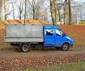 Old blue truck in an autumn garden