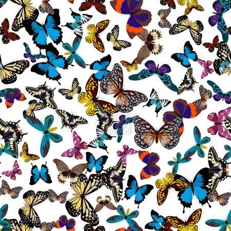 Illustration pour Grande collection de papillons sans couture colorés. Papillons isolés sur blanc. Illustration vectorielle eps10 - image libre de droit