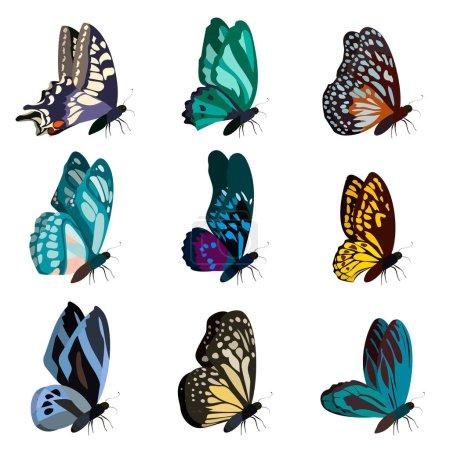 Illustration pour Grande collection de papillons colorés. Papillons isolés sur blanc. Illustration vectorielle - image libre de droit